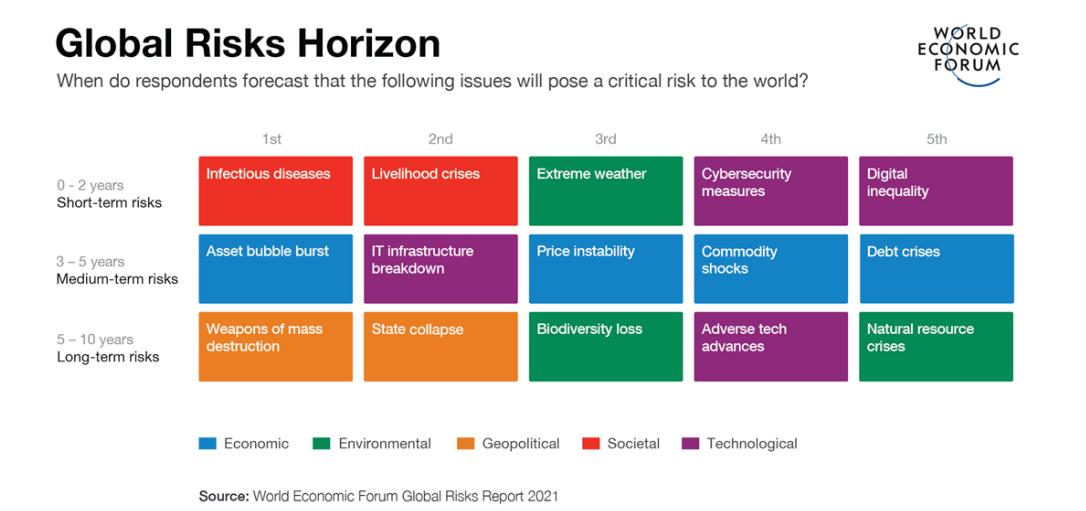 Global Risks Horizon