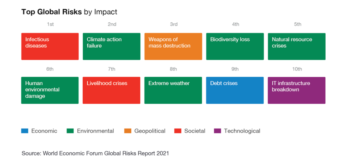 Top riscos globais